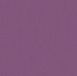 calypso_spc_purple